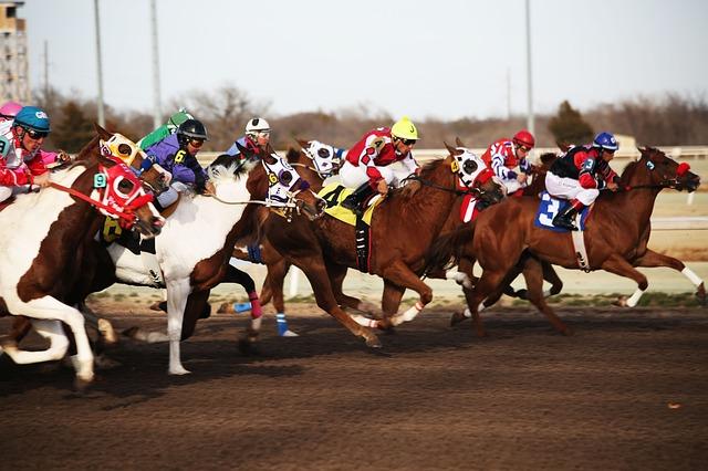 závody na koních