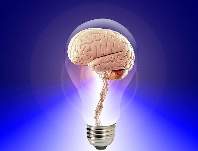 mozek v žárovce