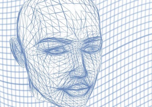 Model obličeje