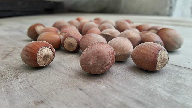 lískové ořechy na stole